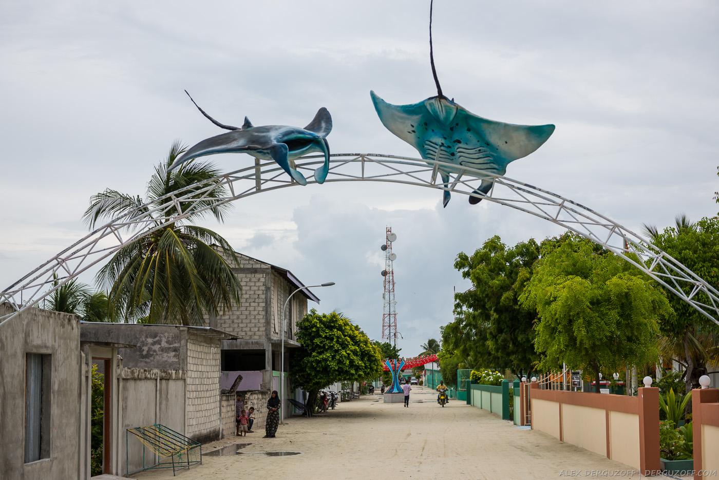 Скаты Мальдивы Маафуши