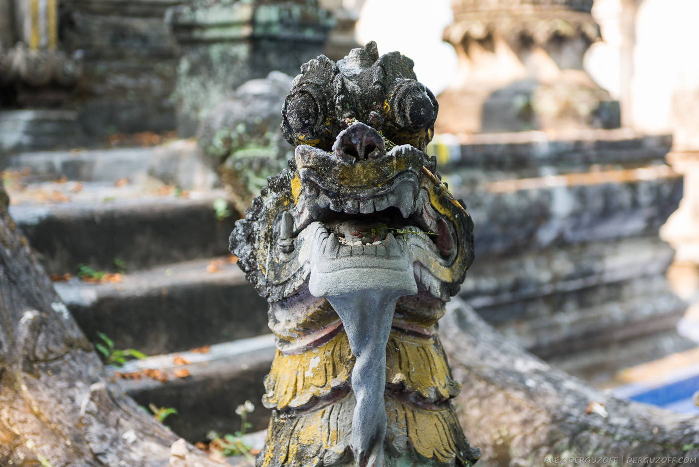 Дракон Таиланд Чиангмай