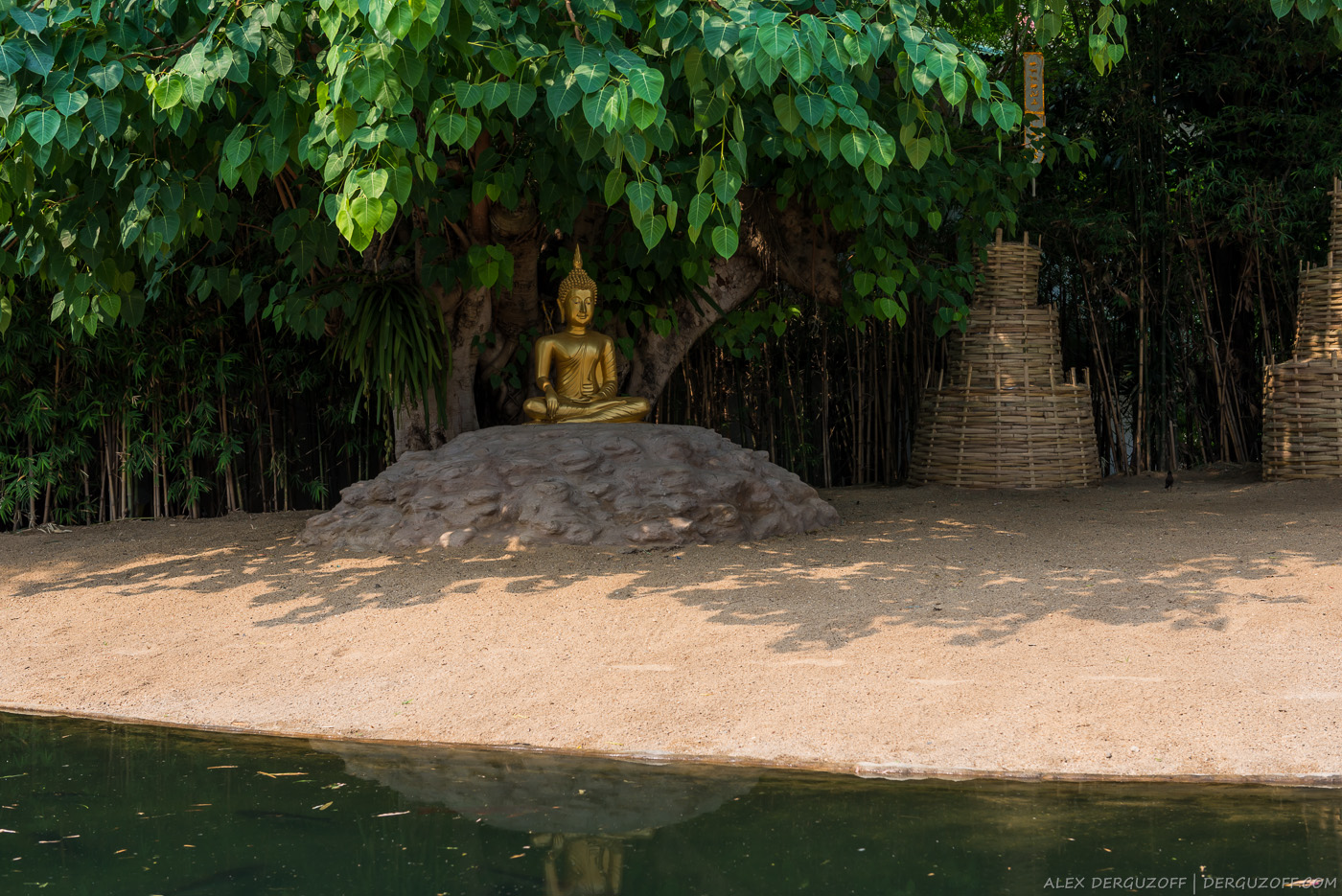 Будда под деревом Таиланд
