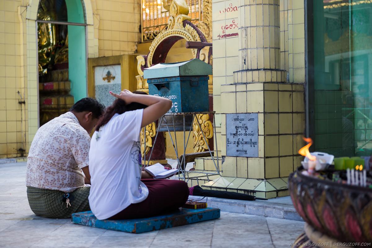 Бирманцы читают молитву Мьянма Янгон