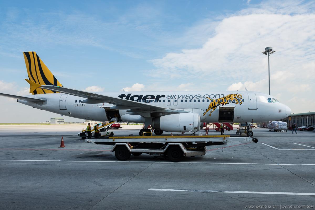 Самолет Tiger Airways в аэропорту Чанги