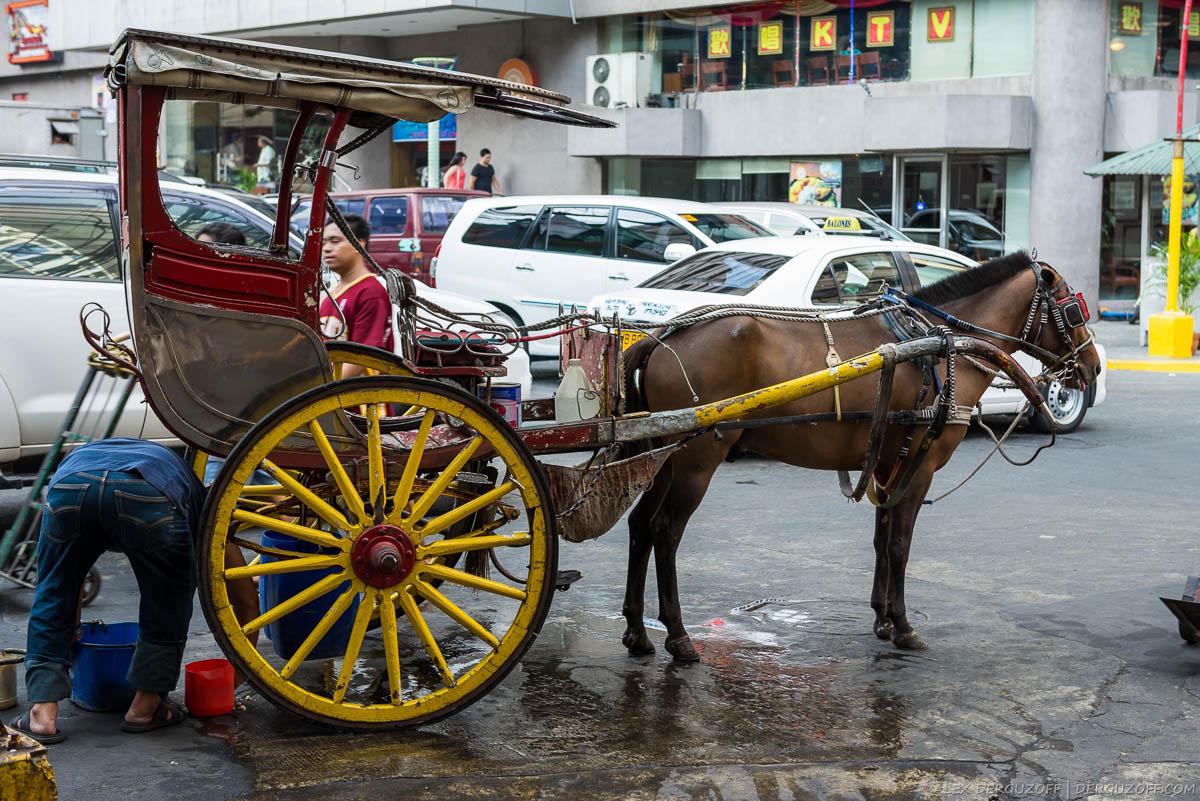 Повозка с лошадью на улице Манилы