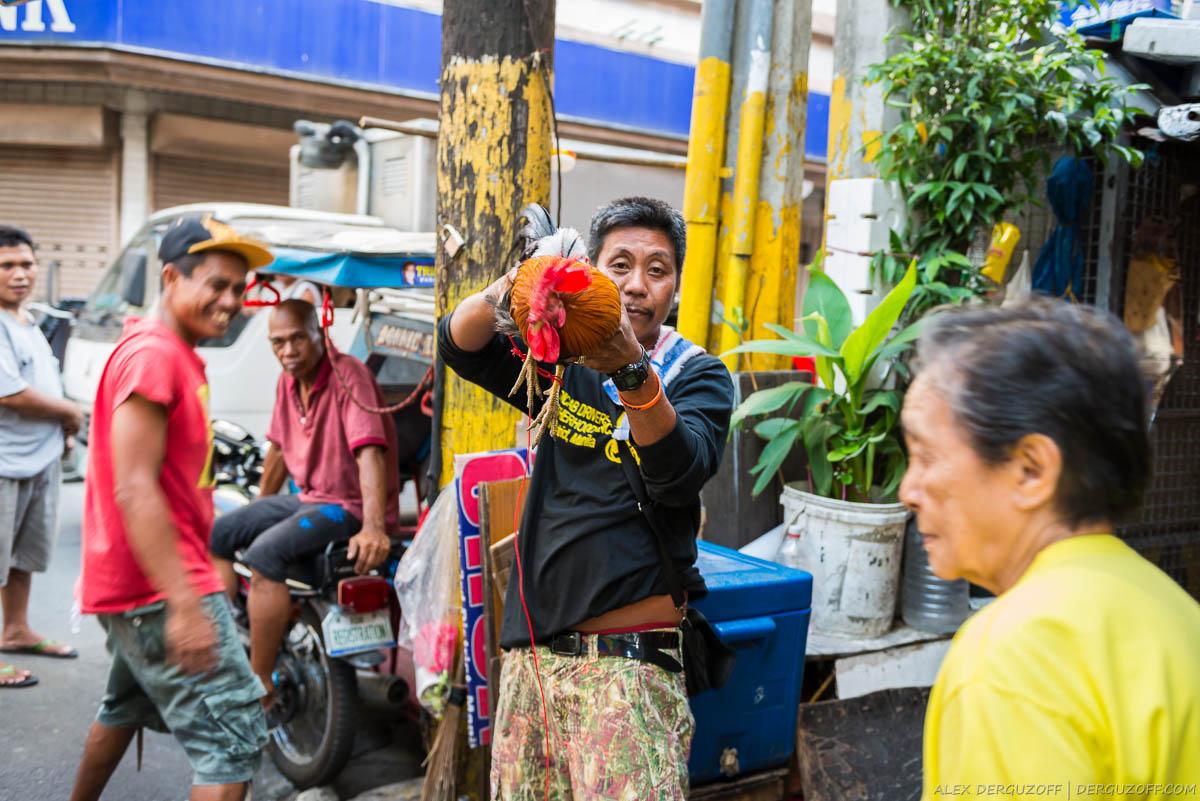 Житель Чайна-тауна с петухом в руках