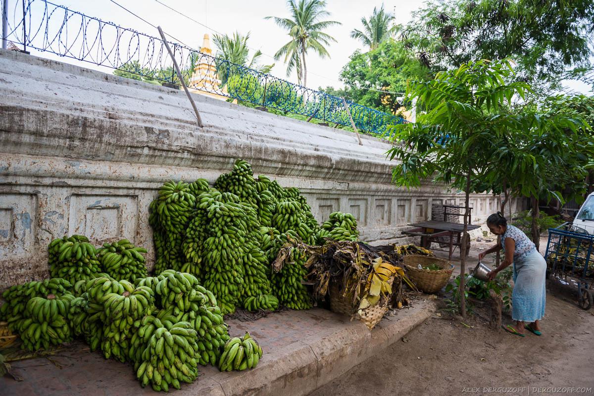 Куча зеленых бананов лежит на улице Мьянма Мандалай