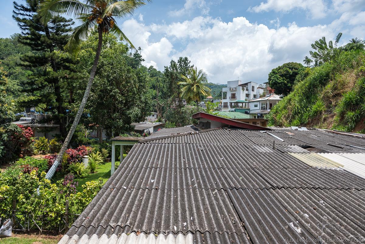 Буйная растительность в центре города Шри-Ланка Канди