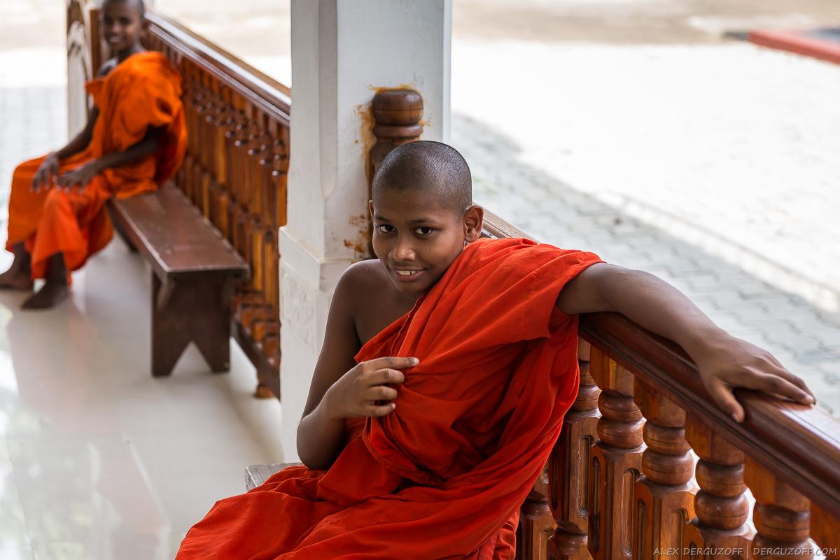 Молодой буддийский монах в оранжевой одежде