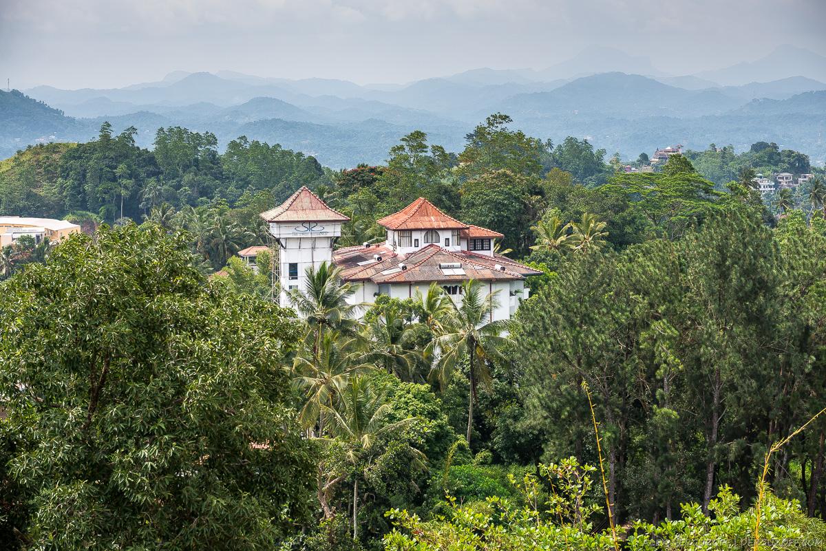 Дом среди джунглей Шри-Ланка