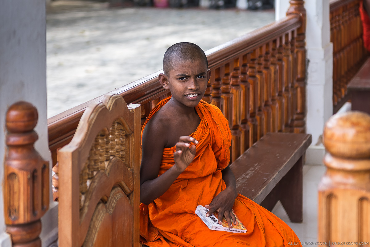 Мальчик-монах читает книгу