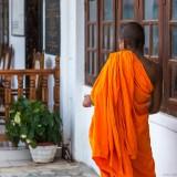 Шри-Ланка Канди: Осторожно, звери!