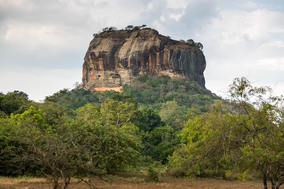 Скала Сигирия на фоне джунглей