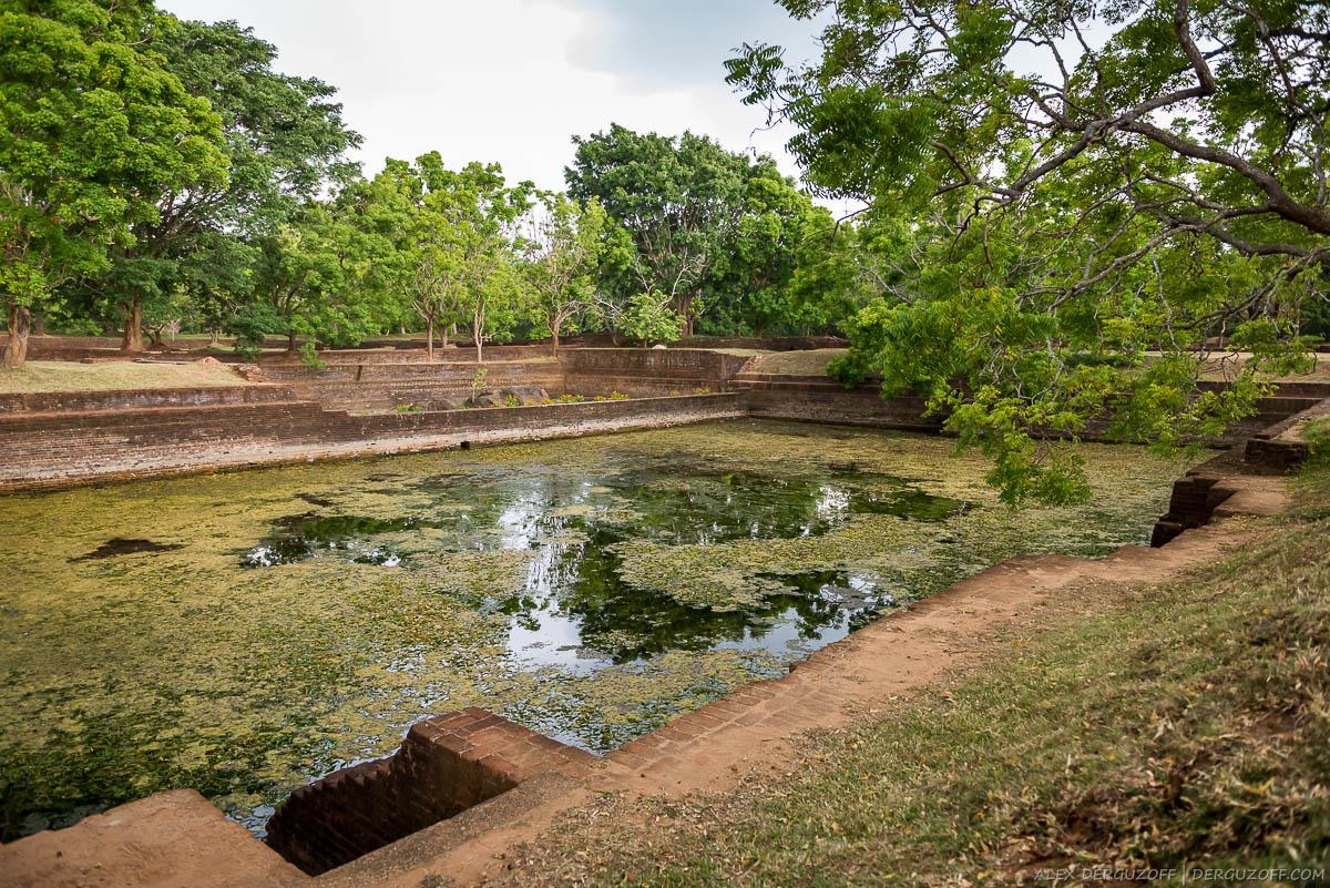 Заросший пруд внутри древнего города
