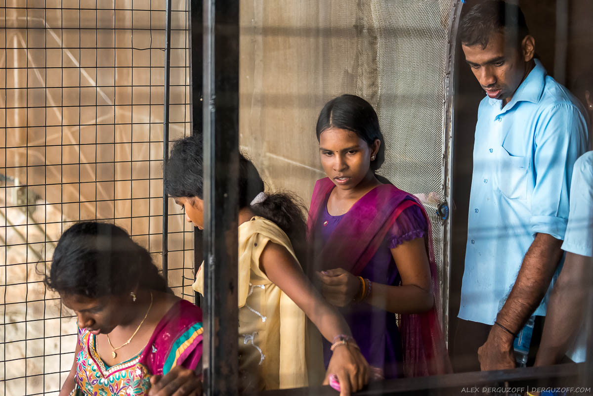 Ланкийцы поднимаются на вершину Сигирии