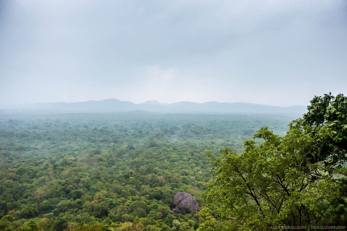 Панорама Шри-Ланки с вершины Сигирии