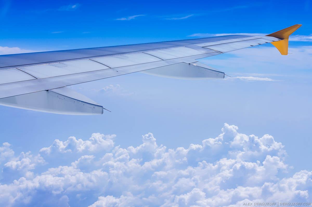 Крыло самолета над облаками дешевые авиабилеты