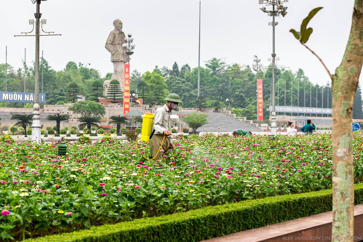 Вьетнамец в маске опрыскивает цветы на фоне статуи вождя