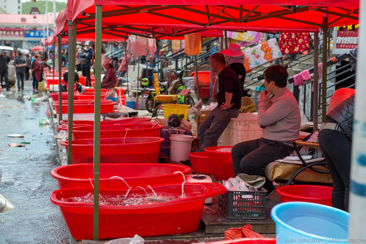 Емкости с живой рыбой для продажи