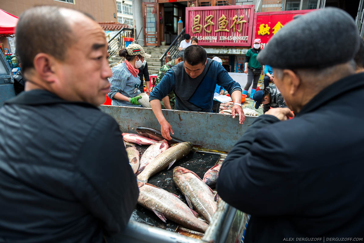 Мужчины обсуждают свежую рыбу Китай