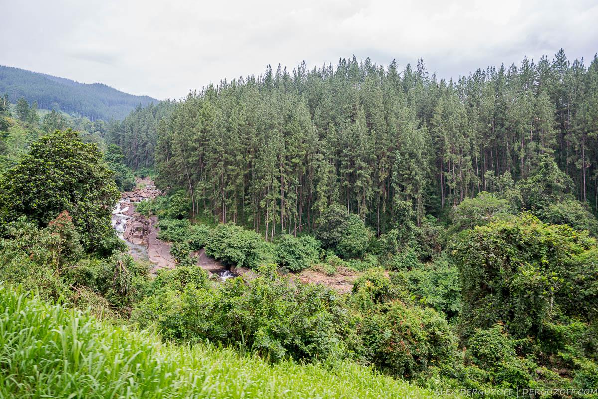 Горный пейзаж Шри-Ланки