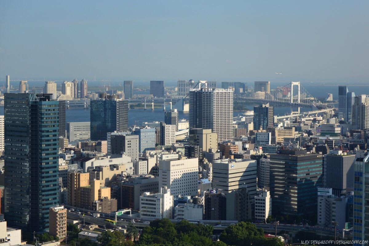 Вид на город с токийской телебашни